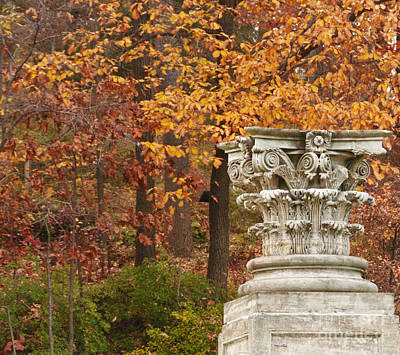 Photograph - Fall Column by Terry Rowe