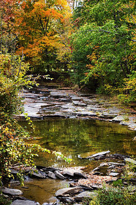 Fall Creek Art Print by Christina Rollo