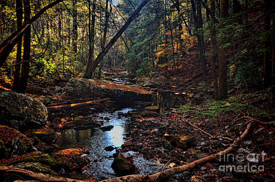 Photograph - Fall Creek by Randy Rogers