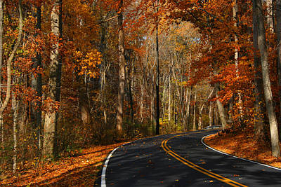 Art Print featuring the photograph Fall Curves by Andy Lawless