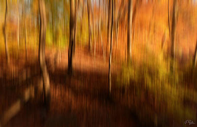 Secret Falls Photograph - Fall Divine by Lourry Legarde