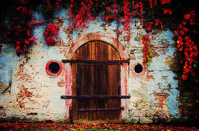 Red Door Photograph - Fall Door by Ryan Wyckoff