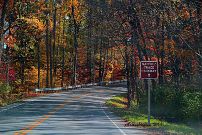 Manipulation Photograph - Fall Drive In Tennessee  1 by EricaMaxine  Price