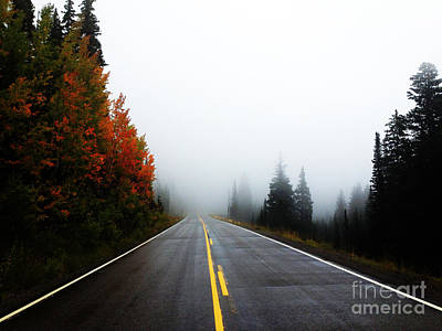 Photograph - Fall Drive by Kate Avery