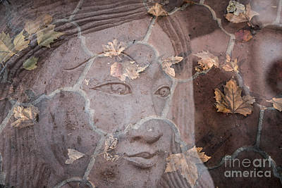 Photograph - Fall Face by Marianne Jensen
