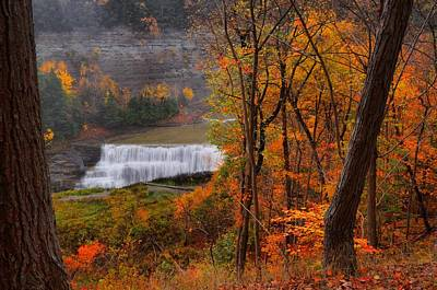 Photograph - Fall Falls by Emily Stauring