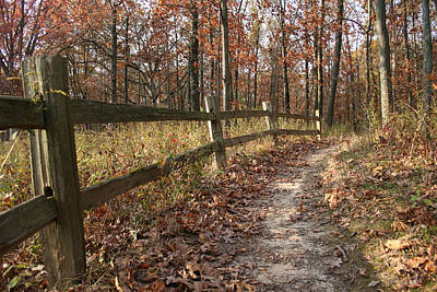 Photograph - Fall Fence II by Dylan Punke