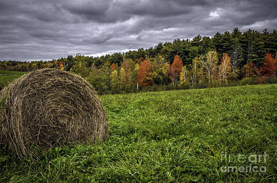Photograph - Fall Fields In Maine by Glenn Gordon