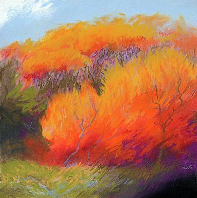 Fall Fire Art Print by Bruce Richardson