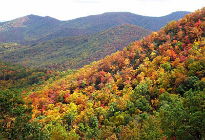 Photograph - Fall Folage 2 Along The Blueridge by Duane McCullough