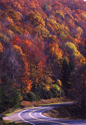 Mannequin Dresses - Fall foliage and curved mountain road PA by Blair Seitz