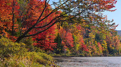 Photograph - Fall Foliage At Elbow Pond by Ken Stampfer