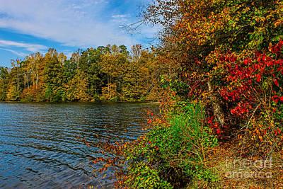 Fall Foliage Original