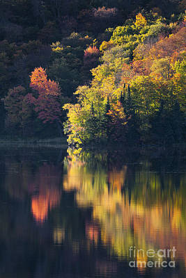 Photograph - Fall Foliage Reflections by Alan L Graham