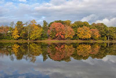 Photograph - Fall Foliage Symmetry by Ben Shields