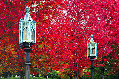 Photograph - Fall Foliage With Lamps by Bauhaus1000
