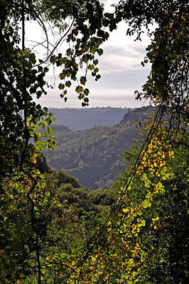 Photograph - Fall Frames The Canyon by Michele Myers
