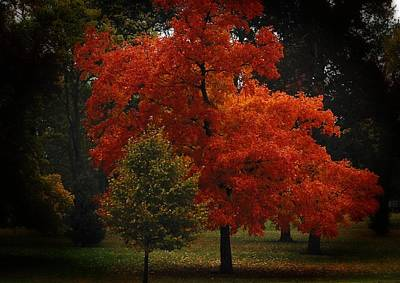 Park Scene Digital Art - Fall Glory by Lena Wilhite
