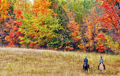 Photograph - Fall Hack by Peter Lindsay