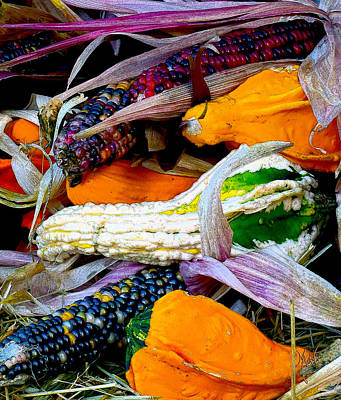 Photograph - Fall Harvest Corn And Gourds by Michele Avanti
