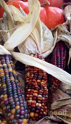 Photograph - Fall Harvest Corn by Susan Garren