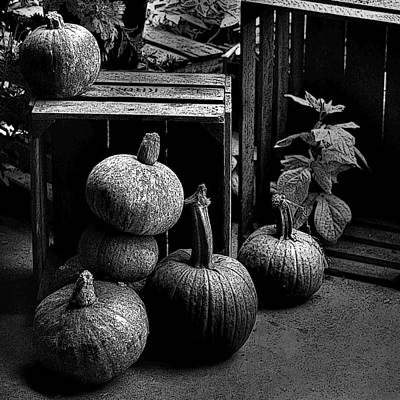 Photograph - Fall Harvest by Kathleen Stephens