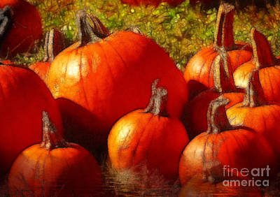 Photograph - Fall Harvest by Kathy Baccari