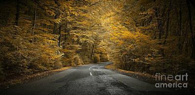 Photograph - Fall Has Arrived by Bernadett Pusztai