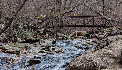Photograph - Fall Hike by Karen Saunders