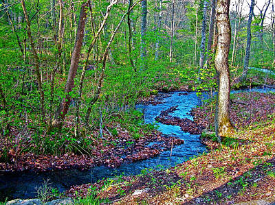 Fall Hollow On Mile 391 Of Natchez Trace Parkway-tenneessee Art Print by Ruth Hager