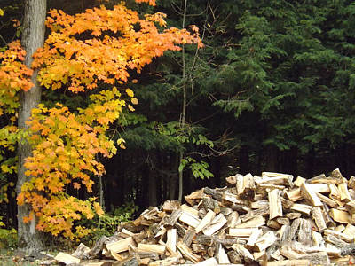 Photograph - Fall Hovers Over Winter Wood Pile by Brenda Brown