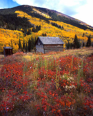 Fall In Ashcroft Art Print by Ray Mathis
