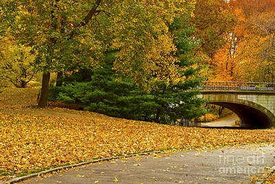 Fall In Central Park New York City Print by Sabine Jacobs