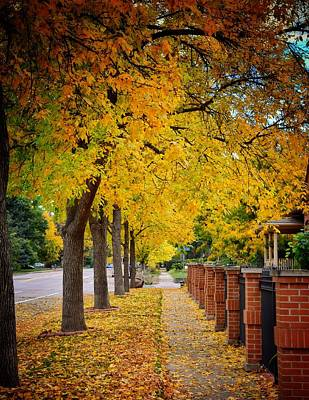 Fall In Fort Collins Art Print