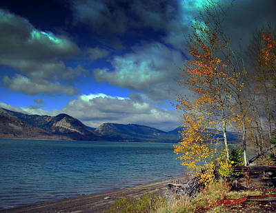 Art Print featuring the photograph Fall In Jackson Lake by Irina Hays