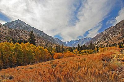 Fall In Lundy Canyon Art Print by Lynn Bauer