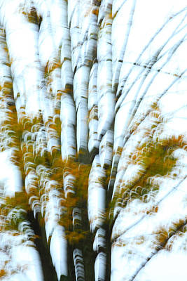 Impressionism Photos - Fall In Motion by Karol Livote