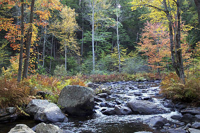 Photograph - Fall In New England by Chris Reed