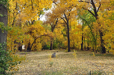 Photograph - Fall In Taos by Helen Haw