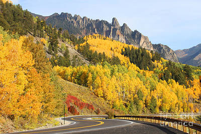 Photograph - Fall In Telluride by Kate Avery