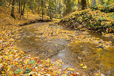 Photograph - Fall In The Creek by Bill Pevlor