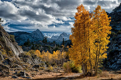 Mountain Royalty-Free and Rights-Managed Images - Fall in the Eastern Sierra by Cat Connor