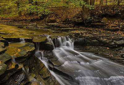 Photograph - Fall In The Metroparks by Torrey McNeal