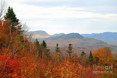 Photograph - Fall In The North Country by Eunice Miller