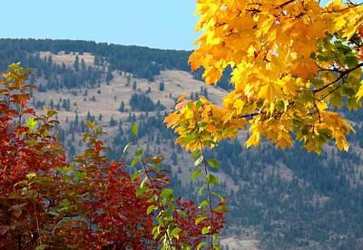 Okanagan Valley Photograph - Fall In The Okanagan Valley by Will Borden