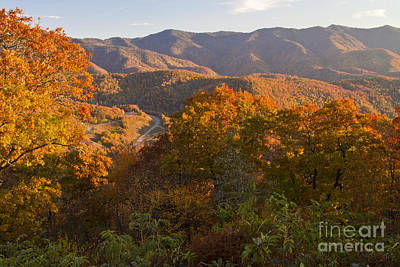 Photograph - Fall In The Smoky Mountains by Dennis Hedberg