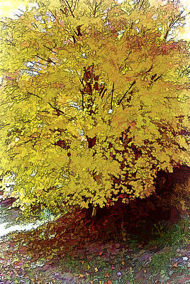 Fall In Yellow Art Print by Larry Bishop