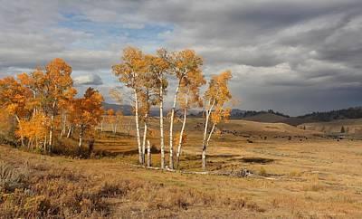 Fall In Yellowstone Art Print by Daniel Behm