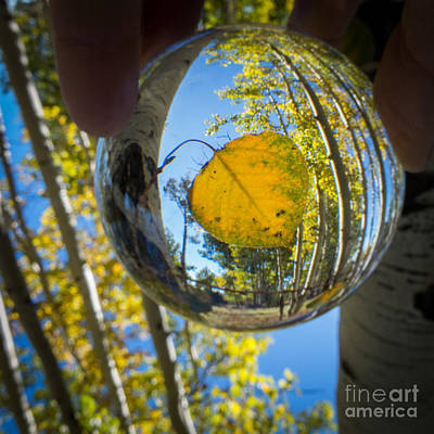Photograph - Fall In Your Future by Marianne Jensen