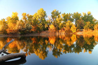 Photograph - Fall Lake by Alicia Knust